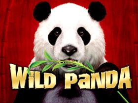 Learn to Play Wild Panda Slots