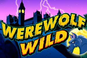 Werewolf Wild Casino Game Review