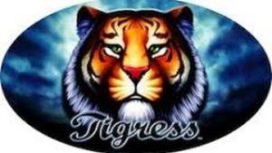 Tigress Slot Details