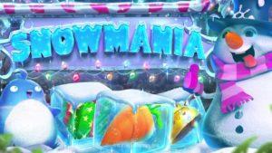 Snowmania 3D Slot Game